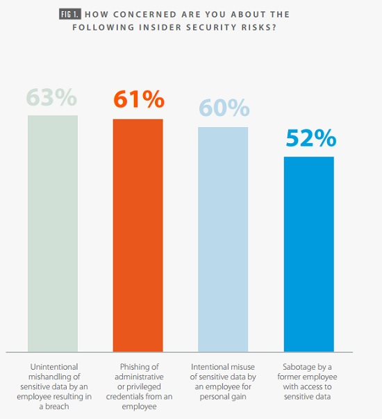 Bomgar graph of top insider security threat concerns